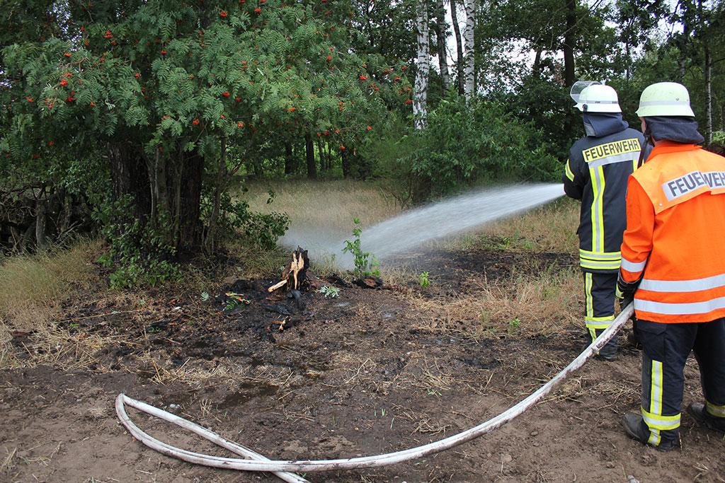 Baumstumpf brennt aus ungeklärter Ursache