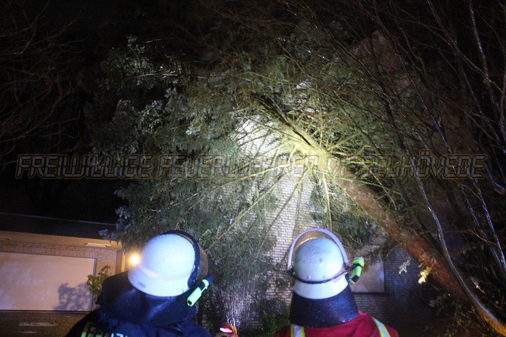 Baum stürzt auf Wohnhaus