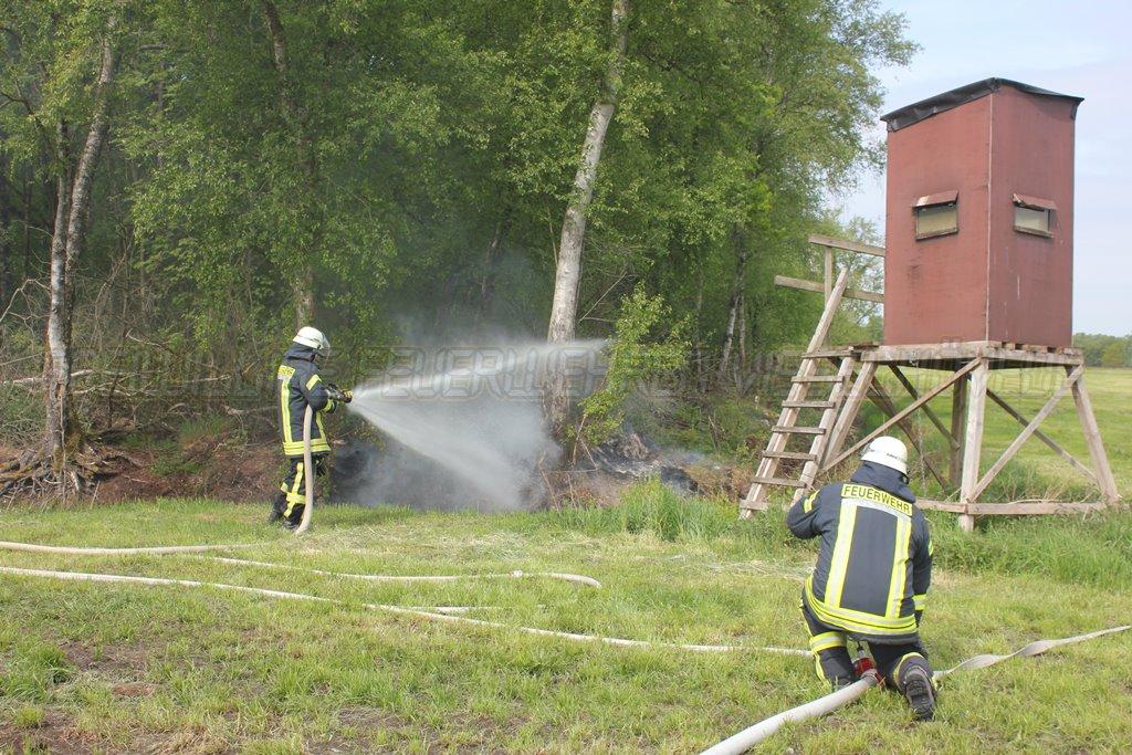 Moorige Böschung brennt am Waldrand